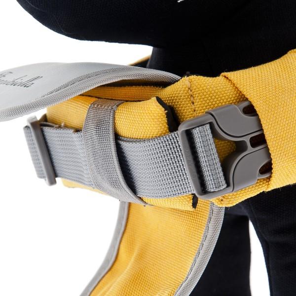 Royal Canin Mini Ageing +12